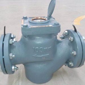 Đồng hồ nước Asahi WVM DN100