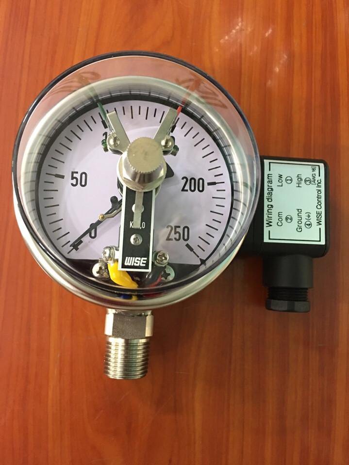 Đồng hồ áp suất 3 kim chân đứng 250 bar