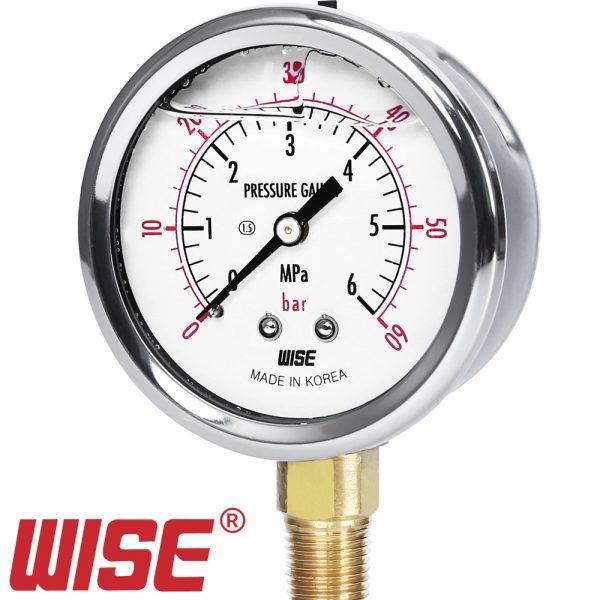 Đồng hồ đo áp suất P254