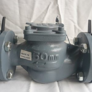 Đồng hồ nước Asahi DN80 lắp bích